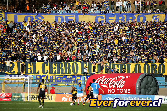 Barra Everton 4
