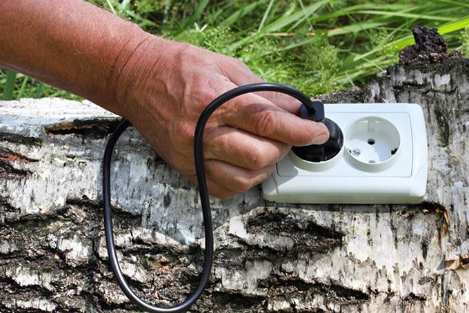 Electricidad Energía Fotosintética